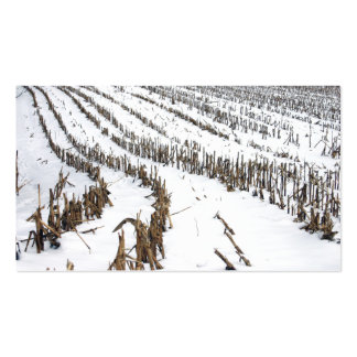 Corn Field In The Snow Business Card