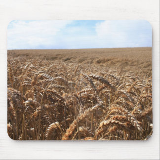 Corn Fields Mouse Pad