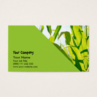 Corn leaves business card