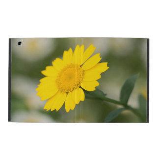 Corn Marigold iPad Cover