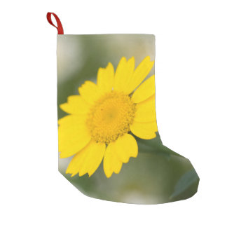Corn Marigold Small Christmas Stocking