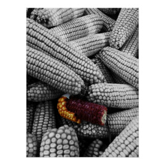 Corn On The Cob Color Splash Poster