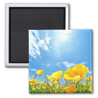 Corn Poppy Field Square Magnet