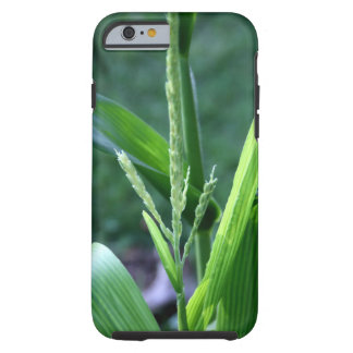 Corn Stalk iPhone case