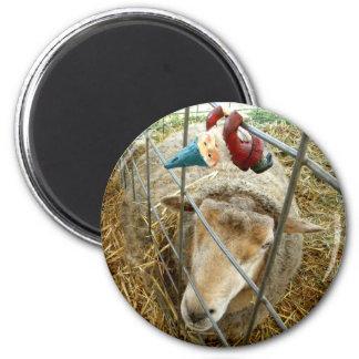 Cornelius and the Sheep 6 Cm Round Magnet
