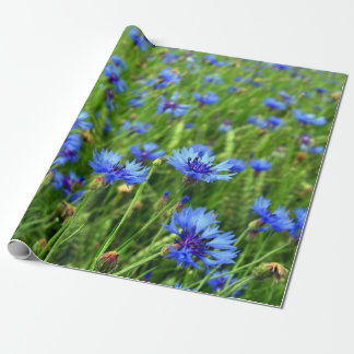 Cornflower blossom field wrapping paper