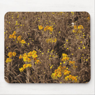 cornflowers Sepia, in the Rocky Mountain Mousepad