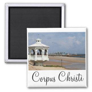 Corpus Christi Magnet
