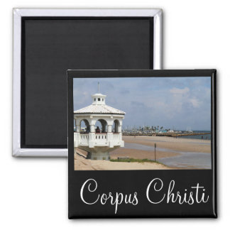 Corpus Christi Texas Magnet