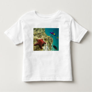 Cortez Rainbow Wrasse male and female and sea Tee Shirts