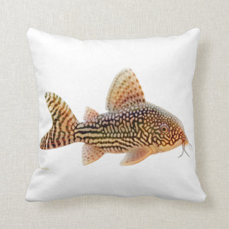 Corydoras Sterbae Catfish Pillow