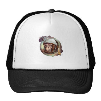 cosmic-chimp-tshirt.jpg cap