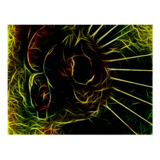 Cosmic Owl Postcard