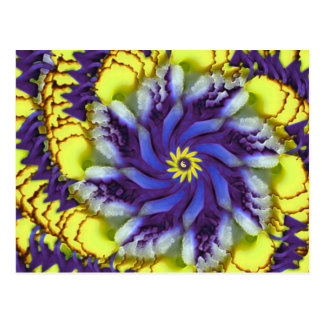 Cosmic Pansy Abstract Postcard