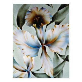 Cosmic perfume flowers postcard