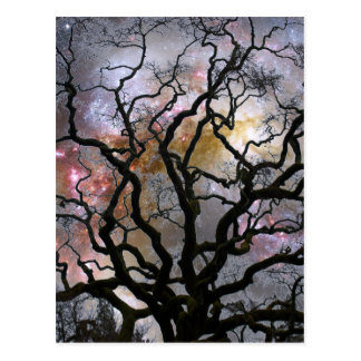 Cosmic Tree - Colliding Galaxies Postcard