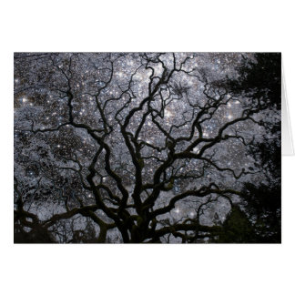 Cosmic Tree - Star Cluster Card
