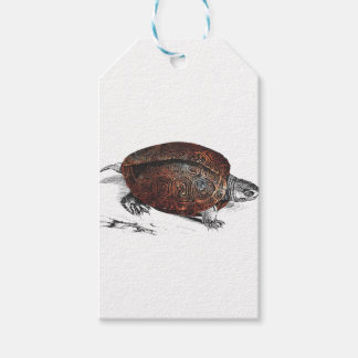 Cosmic turtle 1 gift tags