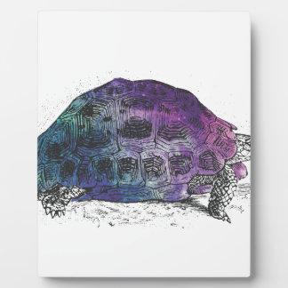 Cosmic turtle 4 plaque