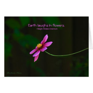Cosmos:Earth Laughs in Flowers Card