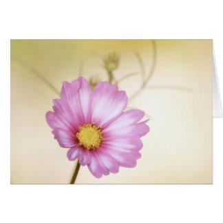 Cosmos Pastel Card