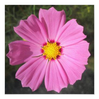 Cosmos Pink Flower 13 Cm X 13 Cm Square Invitation Card