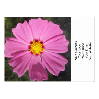 Cosmos Pink Flower Business Card Template