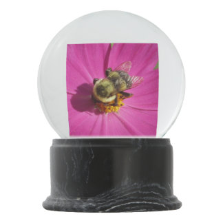 Cosmos Red Flower Bee Snow Globes
