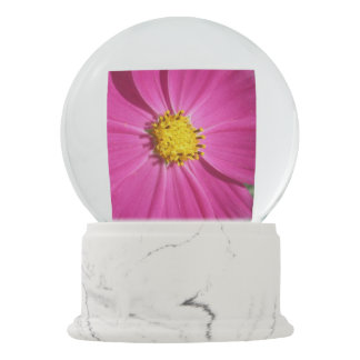 Cosmos Red Flower Snow Globes
