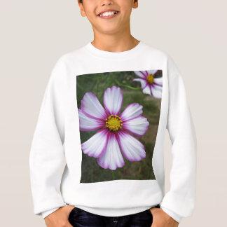 Cosmos Sensation Sweatshirt