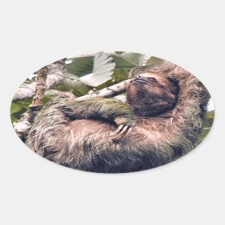 Cosra Rican sloth Oval Sticker