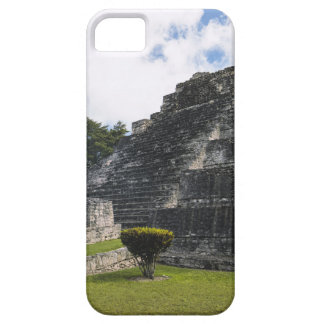 Costa Maya Chacchoben Mayan Ruins Barely There iPhone 5 Case