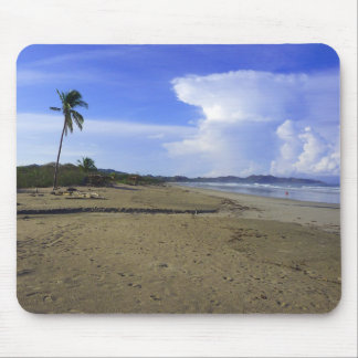 Costa Rica Beach Palm Tree Color Photo Mousepad