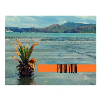 Costa Rica Beach Pura Vida Postcard