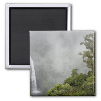 Costa Rica, cloud forest in mountains near La Square Magnet