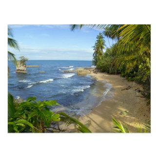 Costa Rica, Manzanillo Wildlife Refuge Postcard