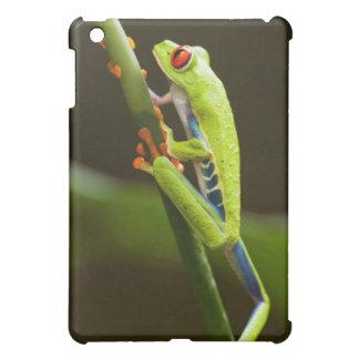 Costa Rica, Monteverde, Red-Eyed Tree Frog iPad Mini Case