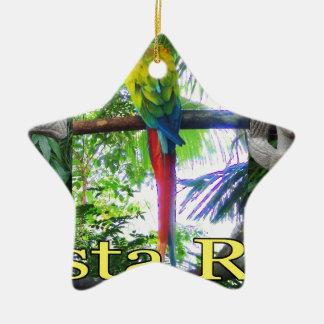 Costa Rica Pre-Columbian Parrot Ceramic Star Decoration