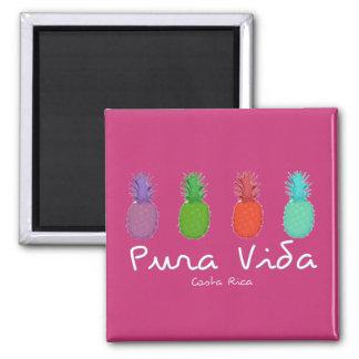 Costa Rica Pura Vida Pineapple Magnet | Pink