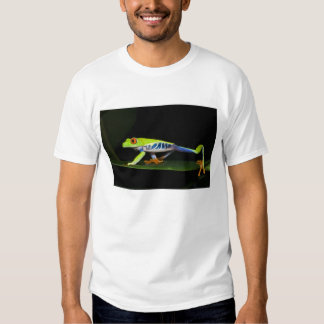 Costa Rica, Red-eyed Tree Frog (Agalychnis T-shirts