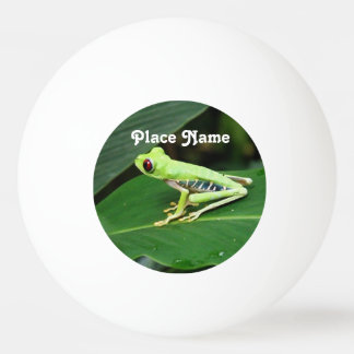 Costa Rica Tree Frog Ping Pong Ball