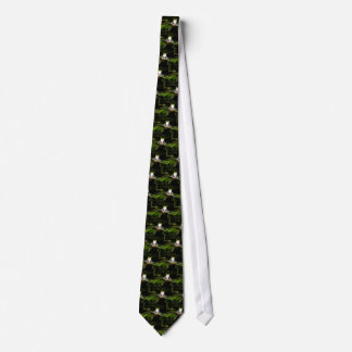 Costa Rican red-eyed tree frog tie