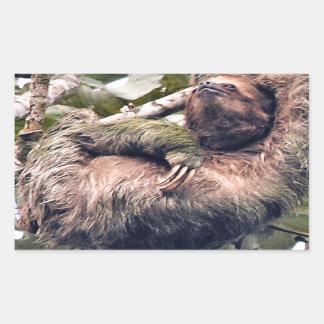 Costa Rican sloth Sticker