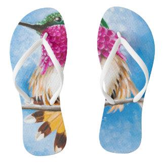 Costa's Hummingbird Thongs