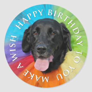 Costumed Black Lab Happy Birthday Classic Round Sticker