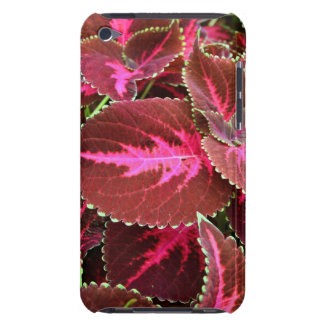 Coteus Case-Mate iPod Touch Barely There Case