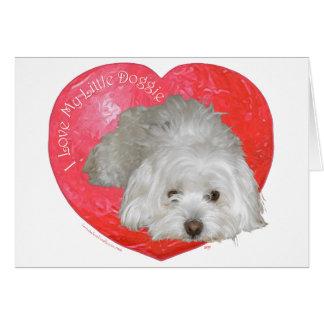 Coton de Tulear Valentine's Day Card