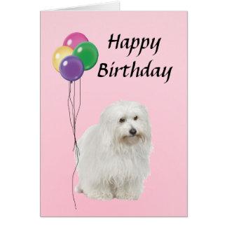 Coton De Tulear with Balloons Happy Birthday Card