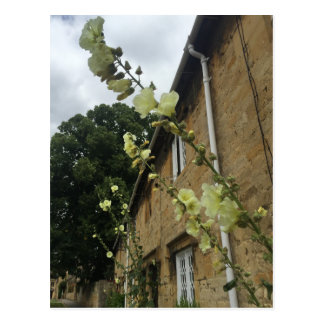 Cotswolds United Kingdom Chipping Campden Postcard