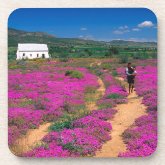 Cottage, Flowers And Girl, Near Kamieskroon Coasters